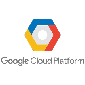 Google Cloud Platform Developer logo